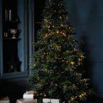 Welk kerstpakket moet je kiezen?